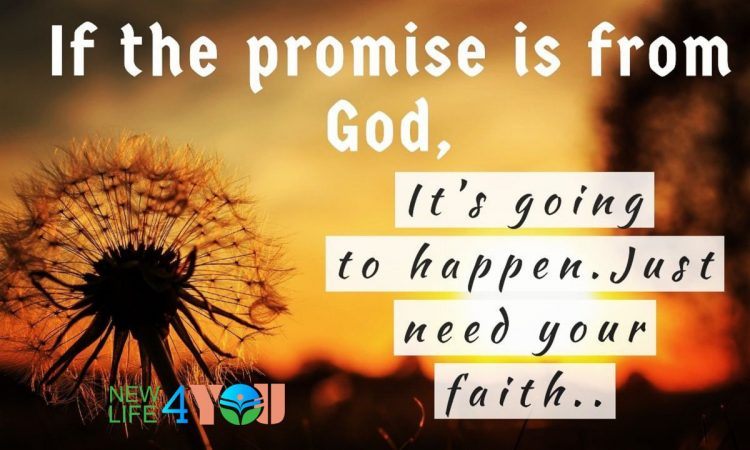 Do you have mustard seed faith today?