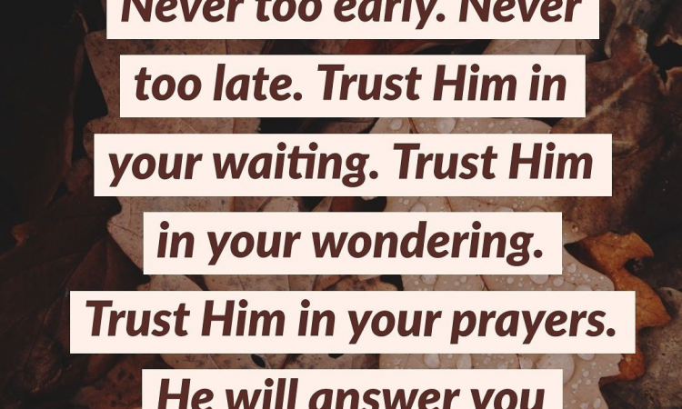 GOD'S TIMING IS PERFECT.TRUST HIM IN YOUR WAITING..