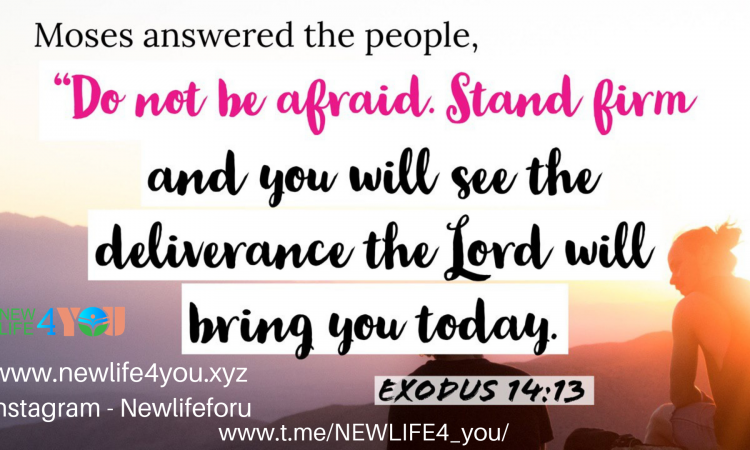 DO NOT BE AFRAID, STAND FIRM