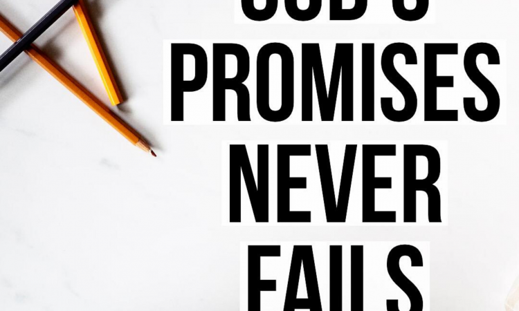 GOD'S PROMISES NEVER FAIL.