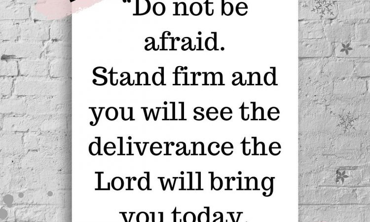 """""""Do not fear! Stand still and see the salvation the LORD will accomplish for you today;"""