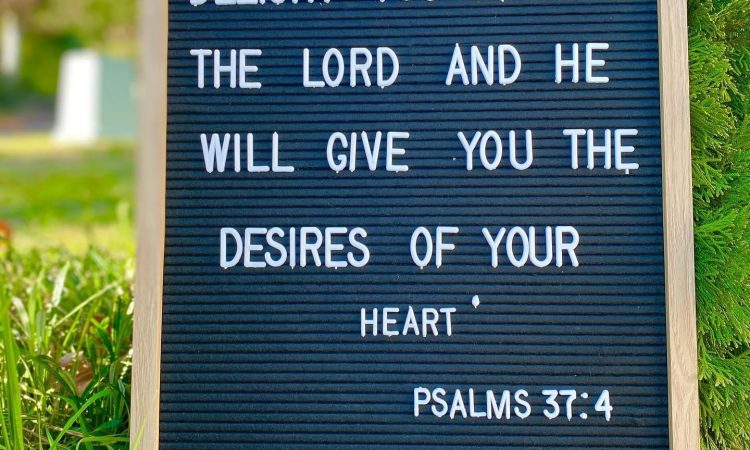 Delight yourself also in the LORD