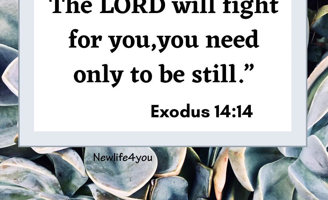 It's not our battle, but the Lord.
